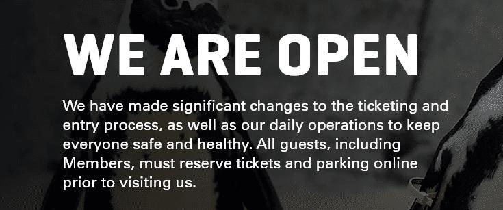dallas zoo we are open statement 2020