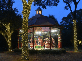 dallas arboretum 12 days of christmas at night event