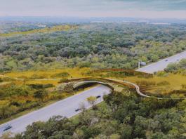 Robert L.B. Tobin Land Bridge artist rendering