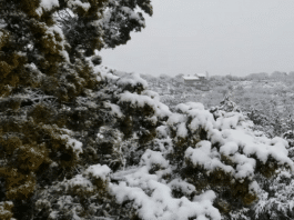 texas hill country snow new years eve 2020