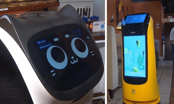 la duni restaurant robots in dallas texas